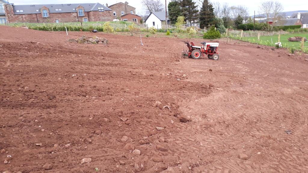 wee tractor big garden.jpg