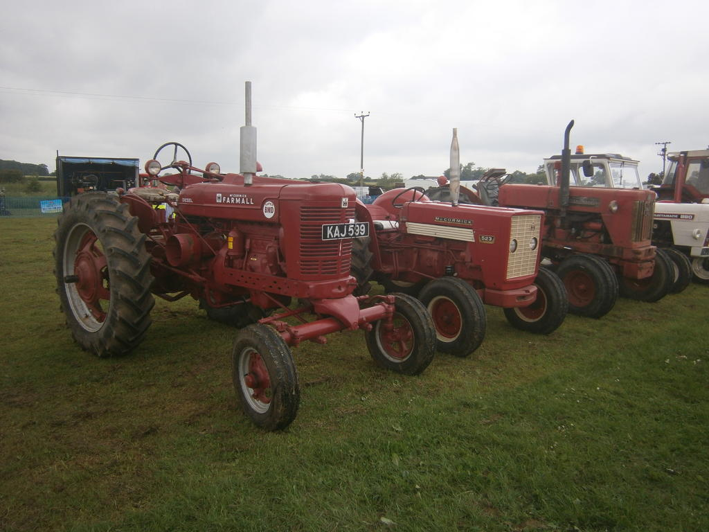 P6030072.JPG